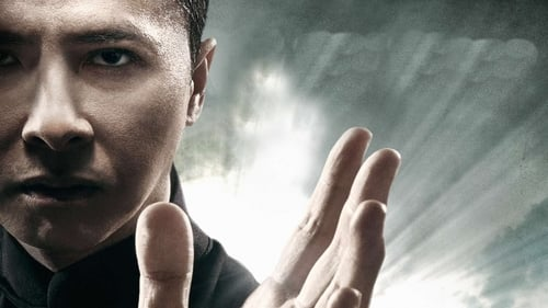 Ip Man 4:The Finale online gratis español latino