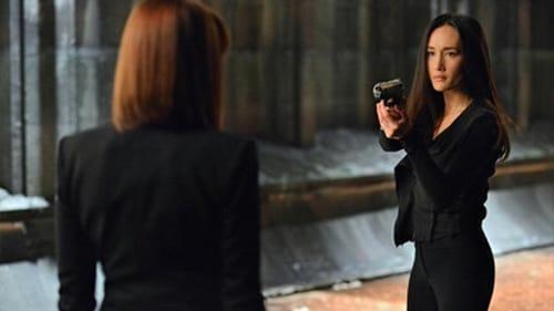 Assistir Nikita S03E21 – 3×21 – Dublado