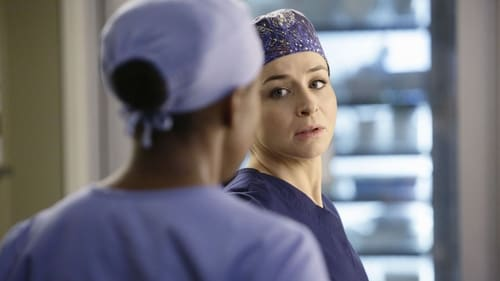 Grey's Anatomy - Season 11 - Episode 14: The Distance