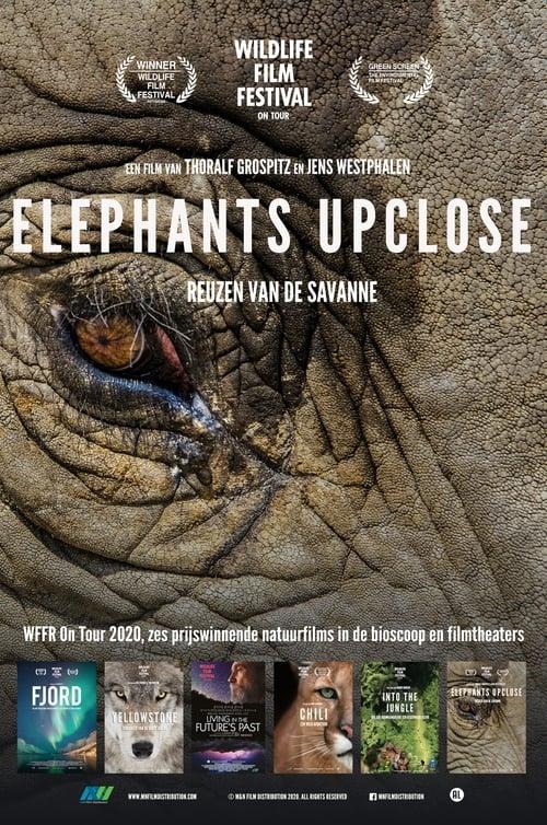 Elephants Upclose English Full Movie Free Download