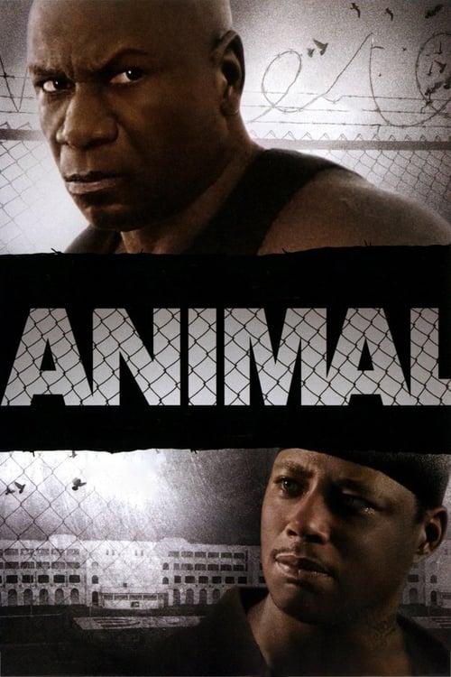 Mira La Película Animal Doblada En Español