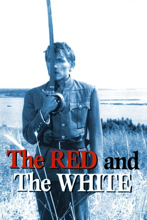 Largescale poster for The Red and the White