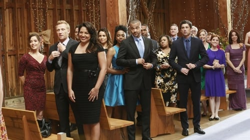 Grey's Anatomy - Season 10 - Episode 12: Get Up, Stand Up
