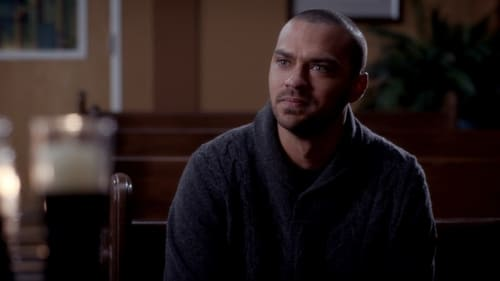 Grey's Anatomy - Season 11 - Episode 11: All I Could Do Was Cry