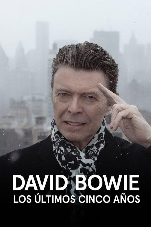 Mira La Película David Bowie: Los últimos cinco años Gratis En Línea