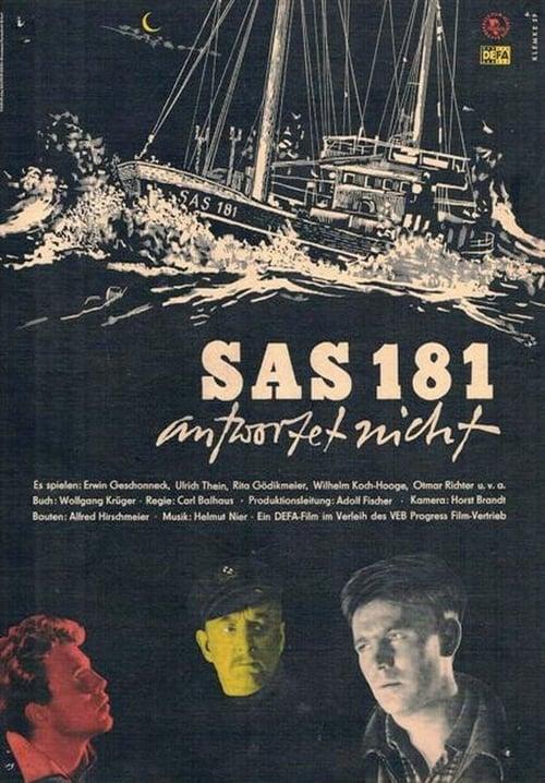 Filme SAS 181 antwortet nicht Dublado Em Português