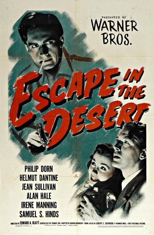 Escape in the Desert Online