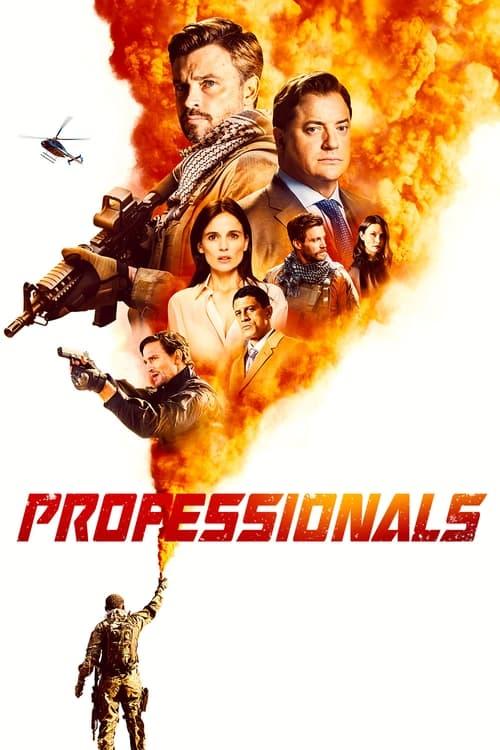 Professionals poster