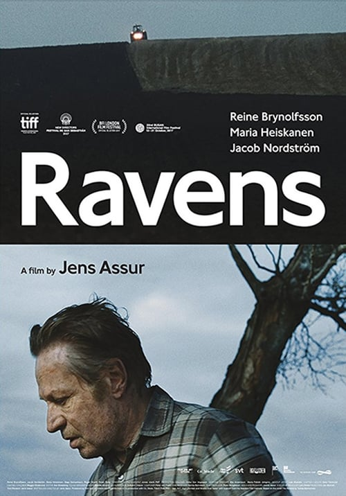 Watch Ravens Online Tvguide