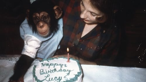 Part 1 Lucy the Human Chimp