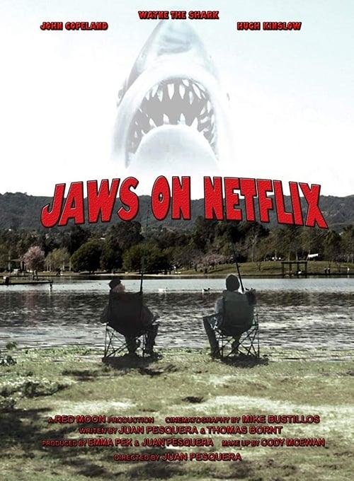 Jaws on Netflix (2013)