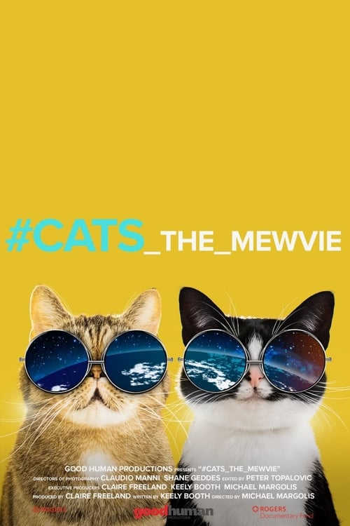 #cats_the_mewvie Whose