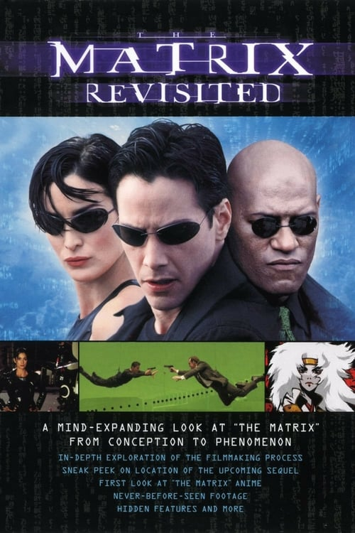 Largescale poster for The Matrix Revisited
