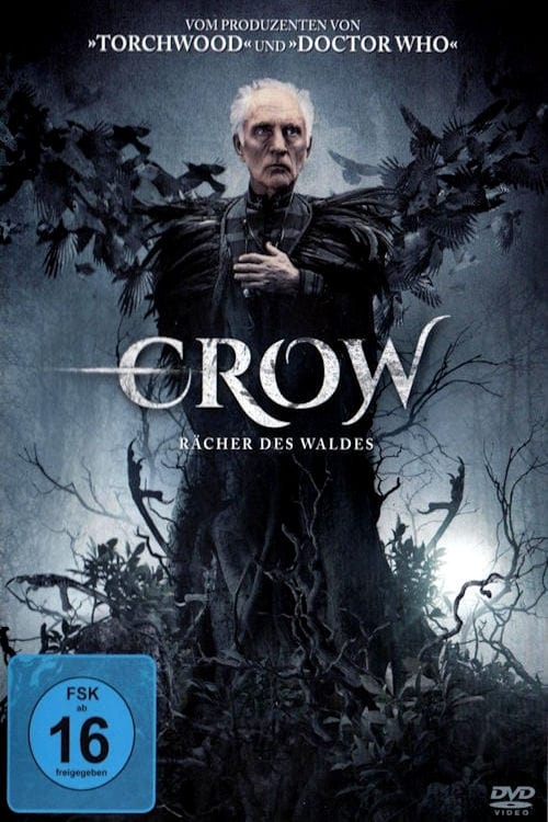 Crow - Rächer des Waldes - Poster