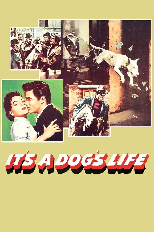 It's a Dog's Life 1955