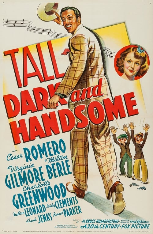 Tall, Dark and Handsome poster