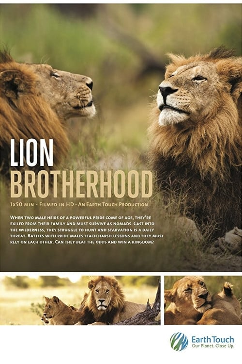 Wild Botswana: Lion Brotherhood (2013)