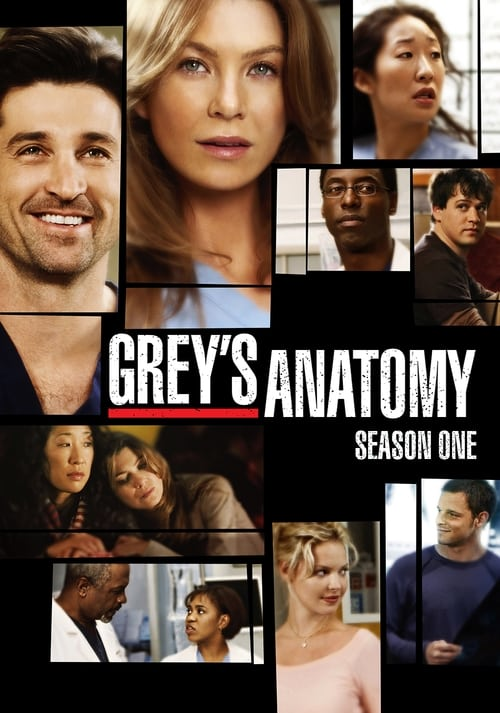 Grey X27 S Anatomy: Season 1