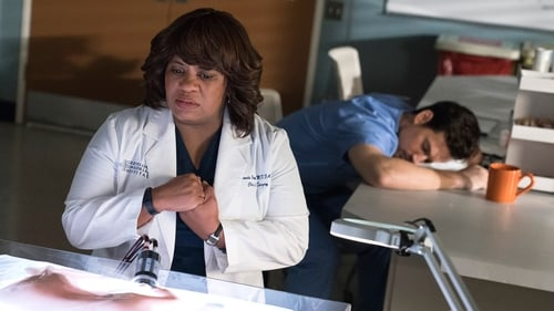 Grey's Anatomy: Season 15 – Episode And Dream of Sheep