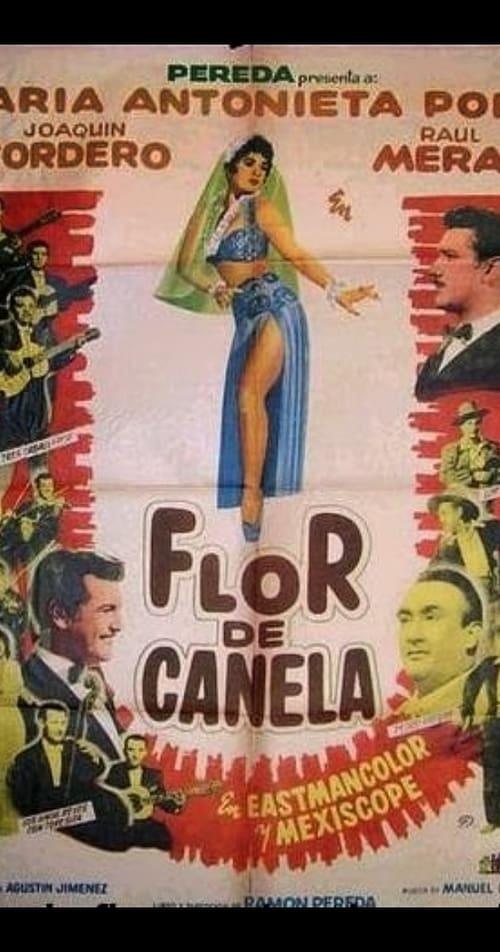 Ver pelicula Flor de canela Online