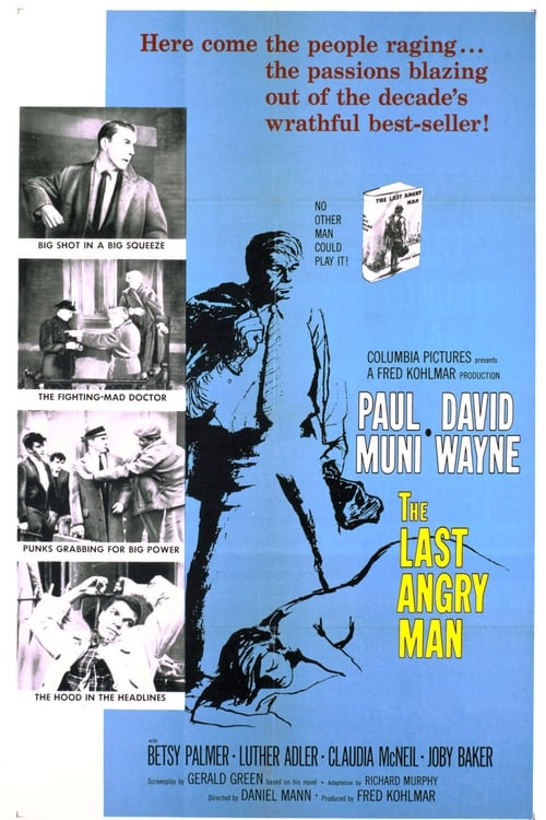 Ver The Last Angry Man Gratis