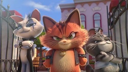 Poster della serie 44 Cats