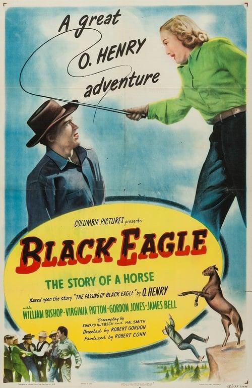 Ver pelicula Black Eagle Online