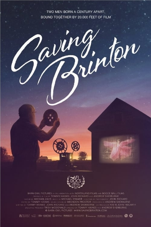 Largescale poster for Saving Brinton