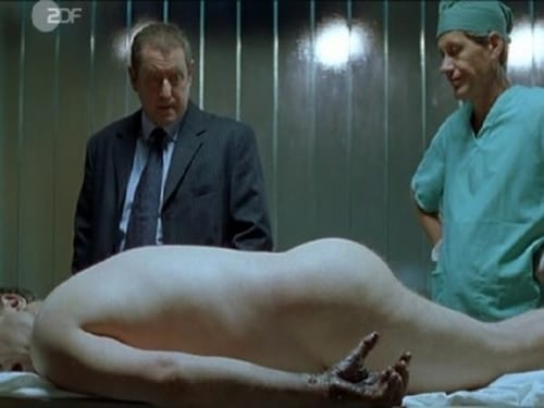 Midsomer Murders: Season 4 – Episode Electric Vendetta