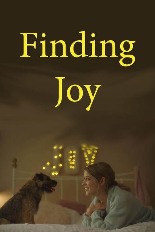 Descargar Finding Joy en torrent