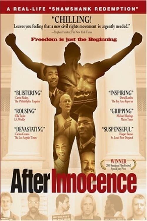 After Innocence (2005) Poster