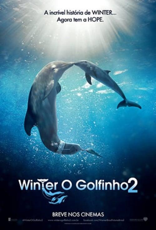 Assistir Winter, o Golfinho 2 Em Boa Qualidade Hd