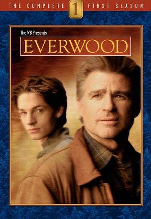 Everwood: Season 1