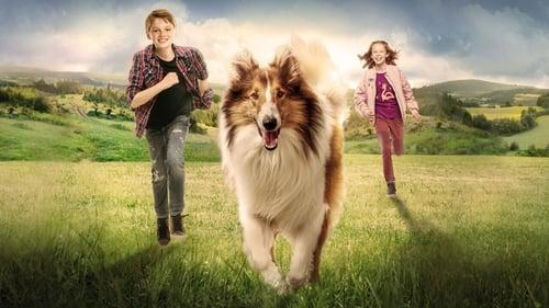 Lassie : La route de l'aventure