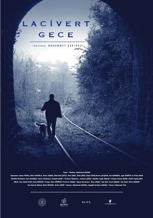 Dark Blue Night Film Complet Streaming