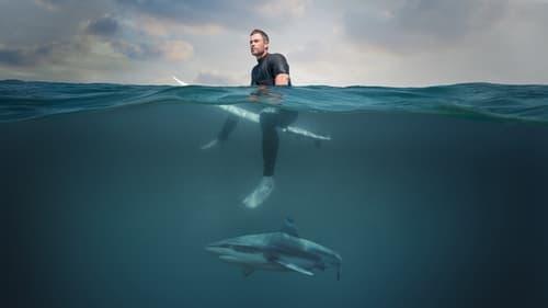 Subtitles Shark Beach with Chris Hemsworth (2021) in English Free Download | 720p BrRip x264