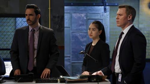 Assistir The Blacklist S08E18 – 8×18 – Dublado