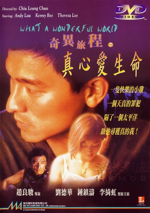 What A Wonderful World 1996 The Movie Database TMDb