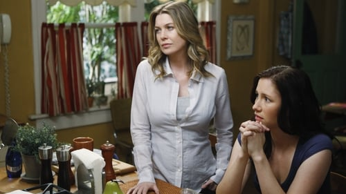 Grey's Anatomy: Season 6 – Episode I Like You So Much Better When You're Naked