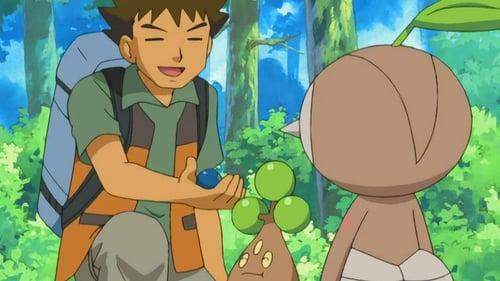 Pokémon: Diamond and Pearl – Épisode Leave it to Brocko!