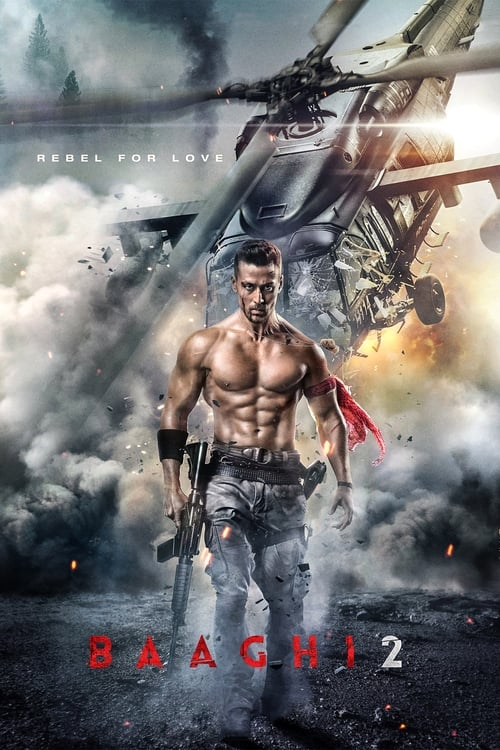 Watch Baaghi 2 (2018) Best Quality Movie
