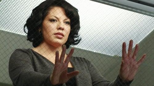 Grey's Anatomy: Season 7 – Episode Song Beneath the Song