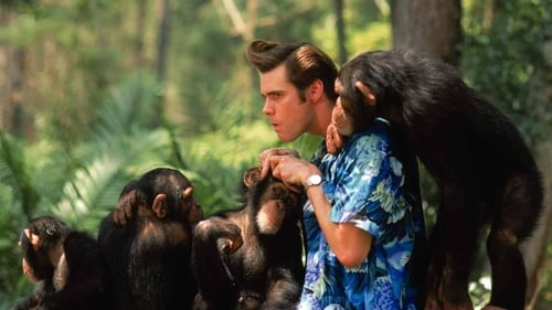 Subtitles Ace Ventura: When Nature Calls (1995) in English Free Download   720p BrRip x264