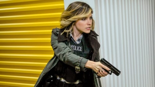 Chicago P.D.: Season 3 – Episode Forget My Name