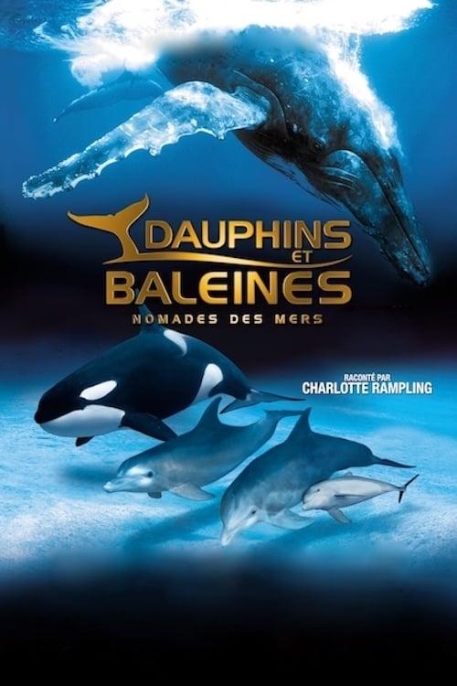 Film Dauphins et baleines : Nomades des mers Gratuit