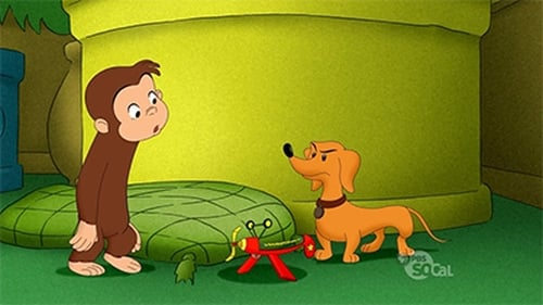 Watch Curious George S9E04 Online