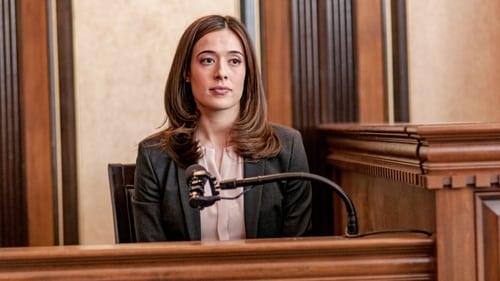 Chicago P.D.: Season 3 – Episode Justice