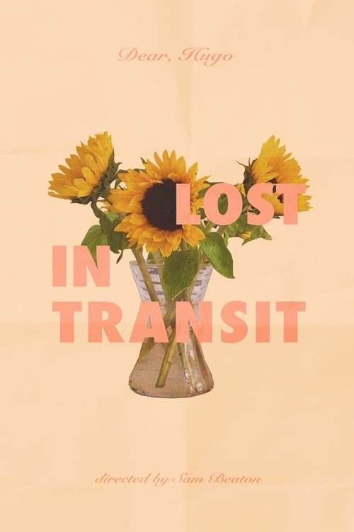 Lost in Transit (2020)