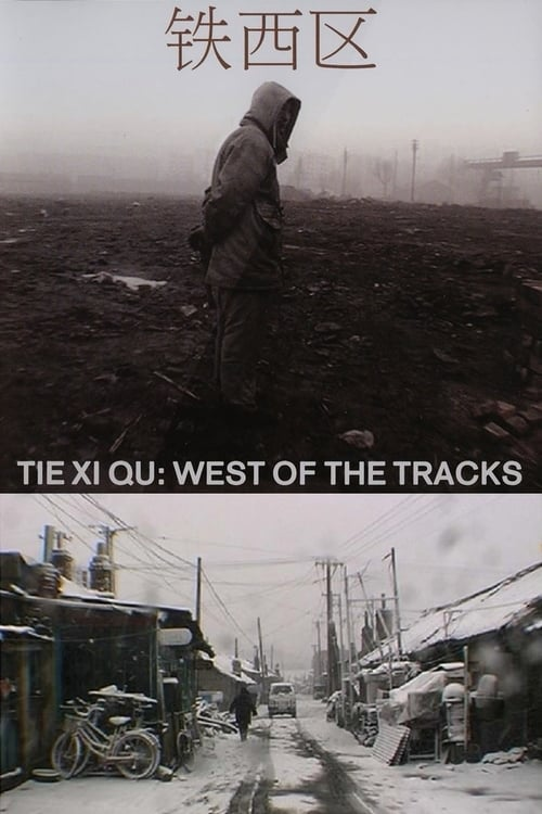 Tie Xi Qu: West of the Tracks (2002)