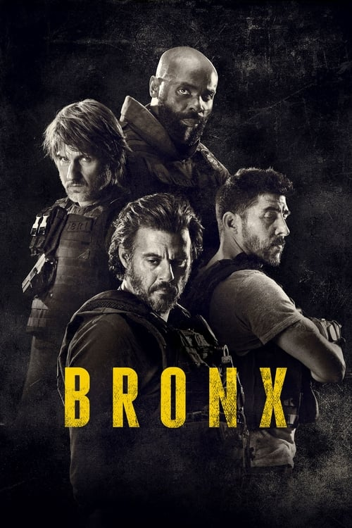 Image Bronx Streaming